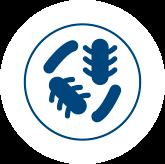 Bactericidal Efficacy